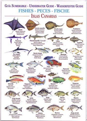9788492648917: Fishes (Waterproof Field Guide) (Canary Islands Field Guides)