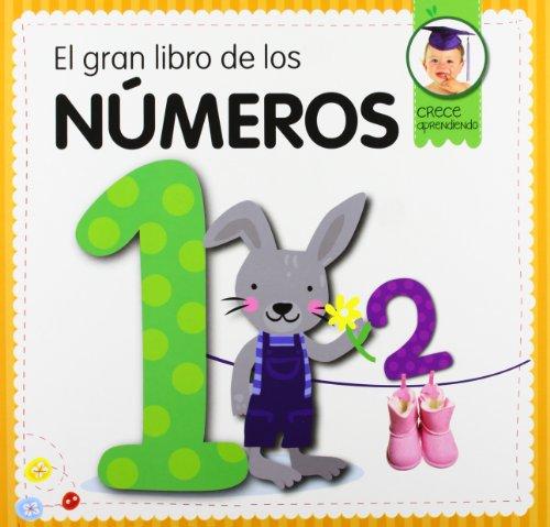 9788492882885: El gran libro de los números