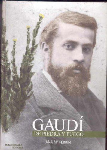 9788493201500: Gaudi: De piedra y fuego
