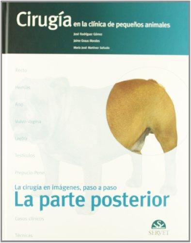 La parte posterior/ The Posterior Part: Cirugia: José Rodríguez Gómez,