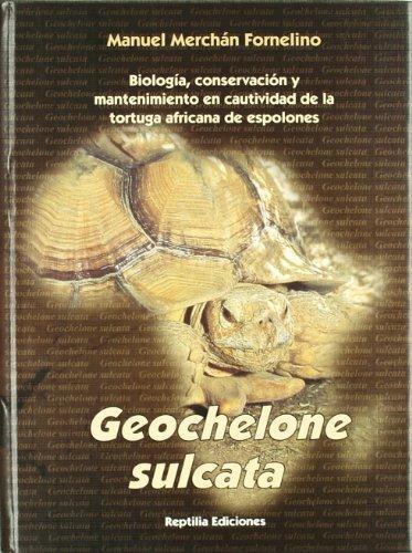 9788493413446: Geochelone sulcata - tortuga africana de espolones