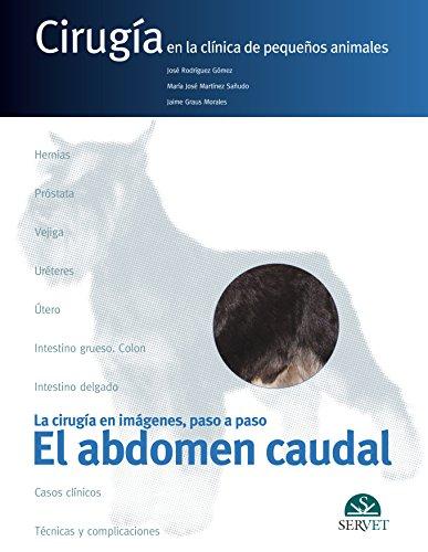 El abdomen caudal: Rodríguez Gómez, José;