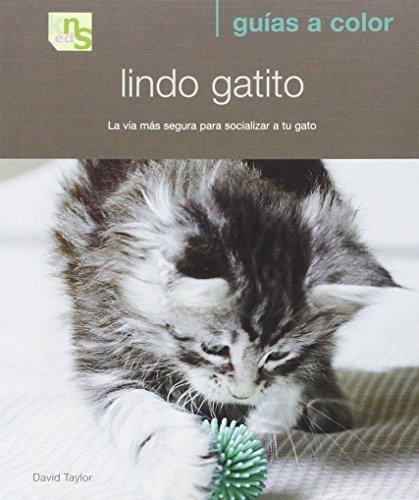9788493662639: Lindo Gatito: la via mas Segura para Socializar a tu Gato