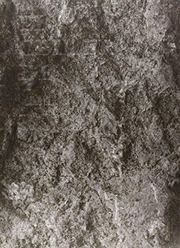 9788493891060: El Celler de Can Roca: El llibre (Cooking Librooks)