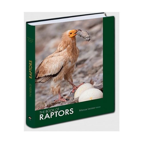 9788493953416: The Book of Raptors