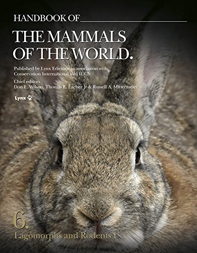 9788494189234: Handbook of the Mammals of the World. Vol.6: Lagomorphs and Rodents I