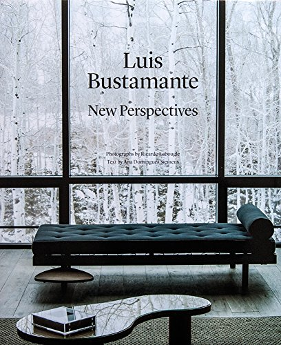 LUIS BUSTAMANTE: New Perspectives: Ana Domínguez Siemens
