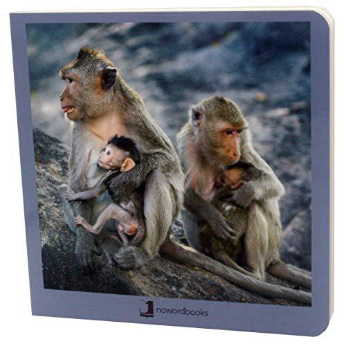 9788494810367: Animales en Familia 2 (Mis Primeras Imágenes)