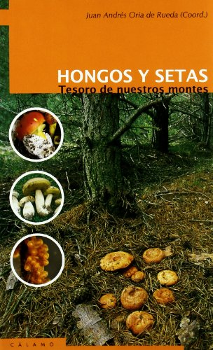 HONGOS Y SETAS : Tesoro de nuestros montes: Juan Andrés Oria de Rueda (coord.)
