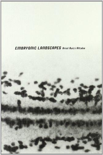 Ariel Ruiz i Altaba: Embryonic Landscapes: Ariel Ruiz i