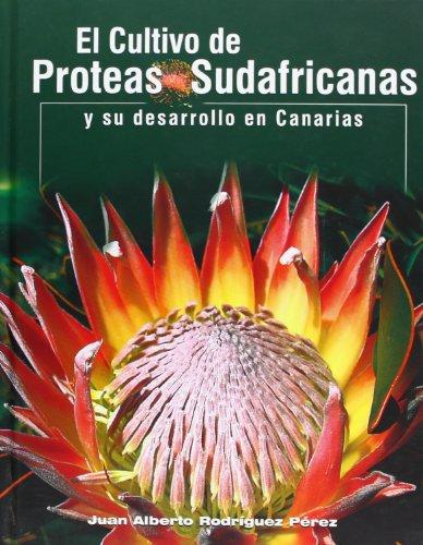 9788495412751: El Cultivo Do Proteas Sudafricanas Y Su Desarrollo En Canarias