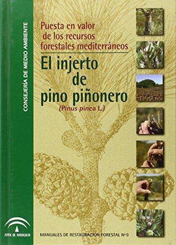 Puesta en valor de recursos forestales mediterráneos: Estirado Oliet, María;
