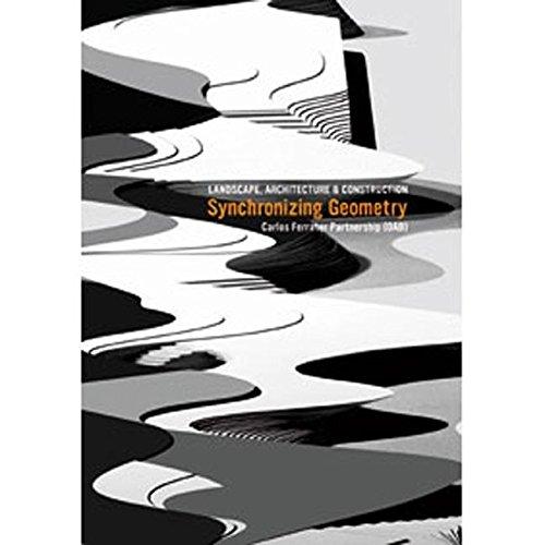 Synchronizing Geometry (Hardcover): Borja Ferrater