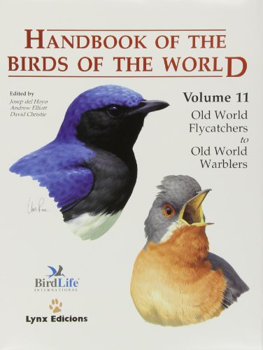 9788496553064: Handbook of the Birds of the World, Volume 11: Old World Flycatcher's to the Old World Warblers (Handbook of the Birds of the World)