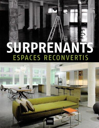 9788496598058: Surprenants espaces reconvertis