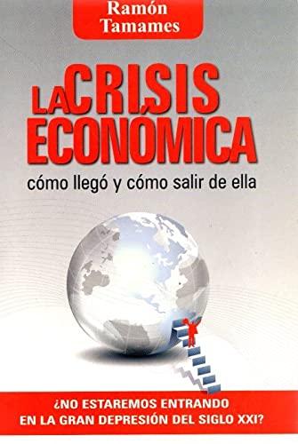 9788496878778: La crisis económica: cómo llegó y cómo salir de ella