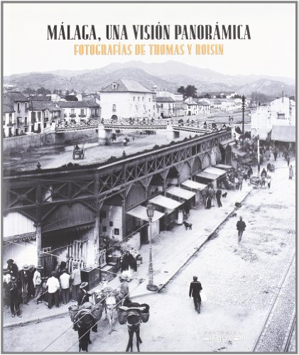 Málaga, una visión panorámica - Javier Ramírez González