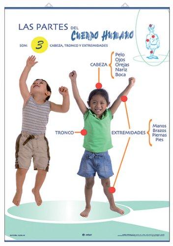 9788496961449: El esqueleto ; Las partes del cuerpo humano : anatomía infantil