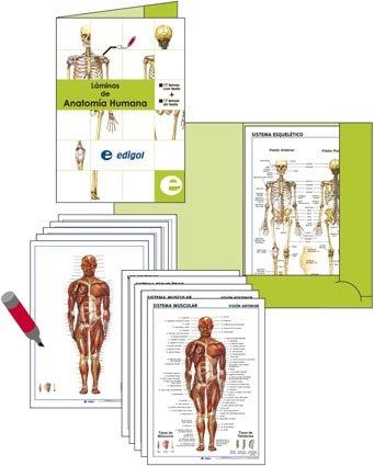 9788496999763: Carpeta D'Anatomia