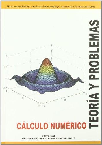 9788497055390: Cálculo Numérico. Teoría y Problemas (Académica)