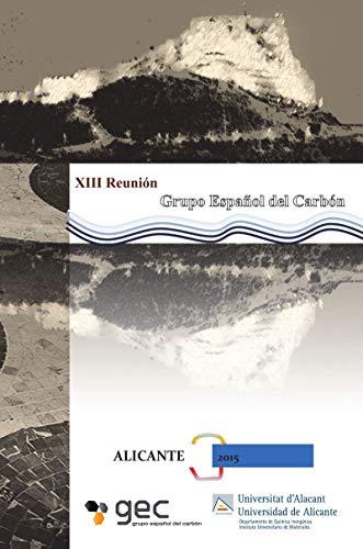 9788497173933: XIII Reunión del grupo español del Carbón: Libro de resúmenes