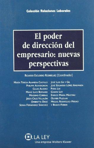 9788497256520: Poder De Direccion Del Empresario:Nuevas Perspectivas
