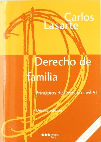 9788497688819: Principios de Derecho civil Tomo VI: Derecho de familia