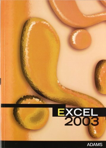 9788498180954: Excel 2003