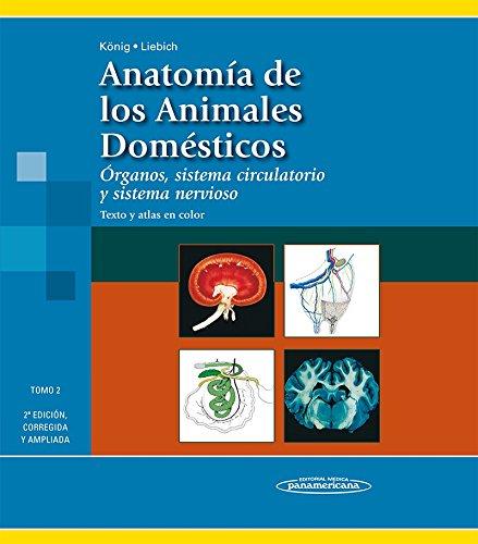 9788498354713: Anatomia de los Animales Domésticos. Tomo 2