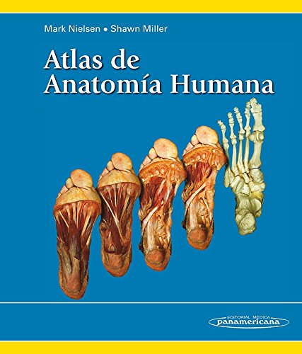 9788498354973: Atlas de anatomia humana / Atlas of Human Anatomy (Spanish Edition)