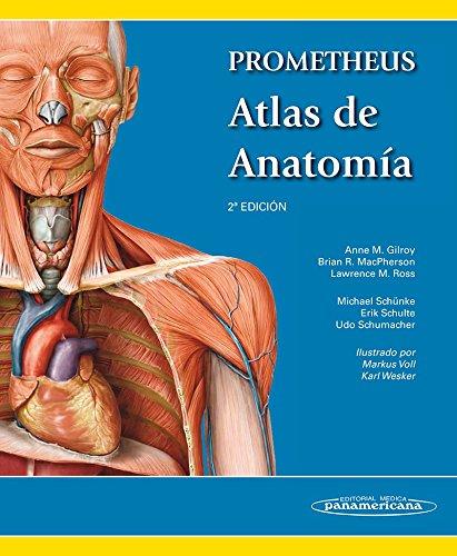 9788498357080: Prometheus atlas de anatomía / Atlas of Anatomy (Spanish Edition)