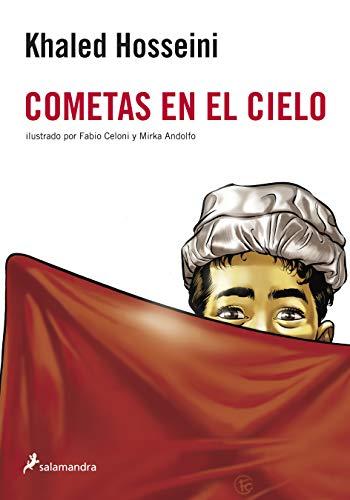 9788498383980: Cometas en el cielo (Novela Gráfica)