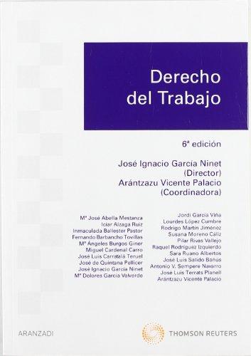 9788499038315: Derecho del Trabajo (Manuales)