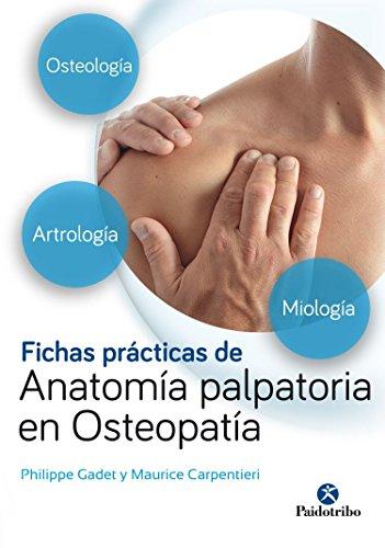 9788499106724: Fichas prácticas de anatomía palpatoria en osteopatía (Medicina)