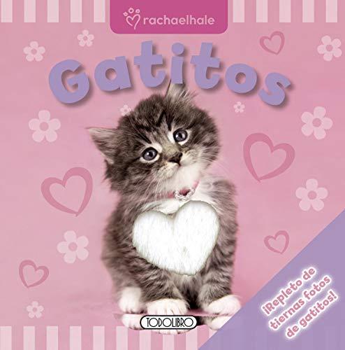 9788499137148: Gatitos