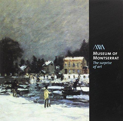 9788499790060: Museum of Montserrat : the surprise of art