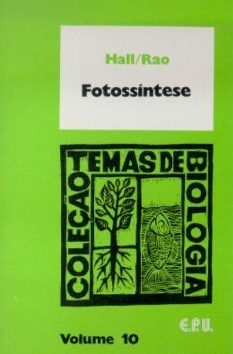 9788520308301: Tratado de direito processual civil (Portuguese Edition)