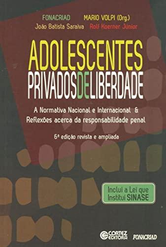9788524922138: Adolescentes Privados de Liberdade: A Normativa Nacional e Reflexoes Acerda da Responsabilidade Penal