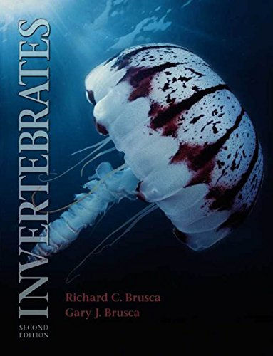 9788527712583: Invertebrados (Em Portuguese do Brasil)