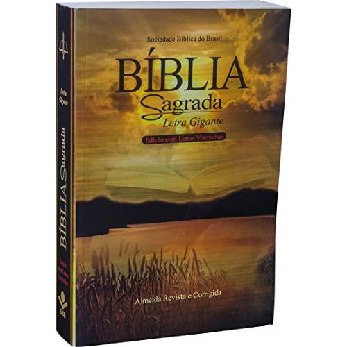 9788531110467: Bíblia Sagrada- Letra Gigante