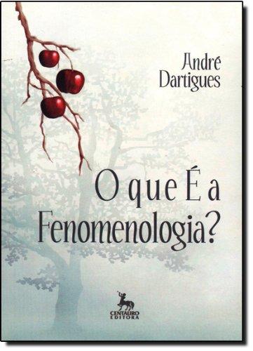 9788588208377: O Que É A Fenomenologia?