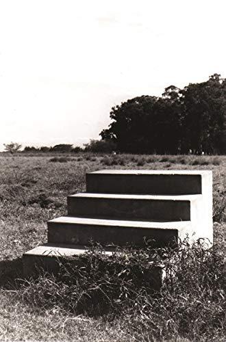 9788588840935: Vera Chaves Barcellos. Obras Incompletas