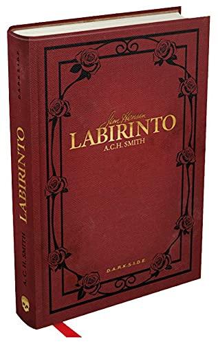 9788594540096: Labirinto (Em Portuguese do Brasil)