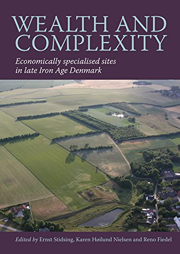 WEALTH AND COMPLEXITY (East Jutland Museum Publications): STIDSING E