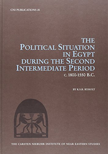 9788772894218: Political Situation Egypt (CNI Publications)