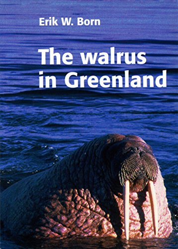 9788779752214: The Walrus in Greenland
