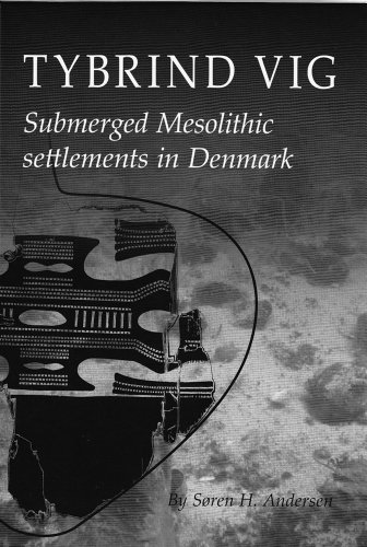 9788788415780: Tybrind Vig: Submerged Mesolithic settlements in Denmark (Jutland Archaeological Society Publications)