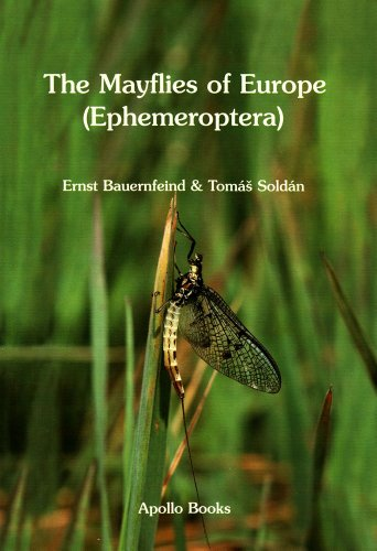 The Mayflies of Europe (Ephemeroptera) (Hardback): Ernst Bauernfeind, Tomas