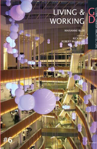 Living Spaces Working Spaces: Global Danish Architecture (Paperback): Marianne Ibler