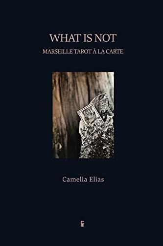 9788792633439: What is not: Marseille Tarot à la carte (Divination)